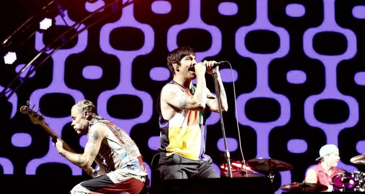 chili peppers 1